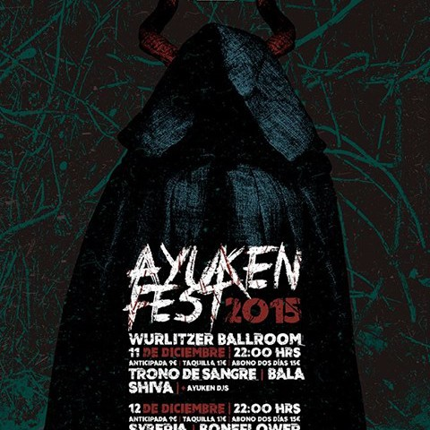 cartel fiesta Ayuken MP 2015