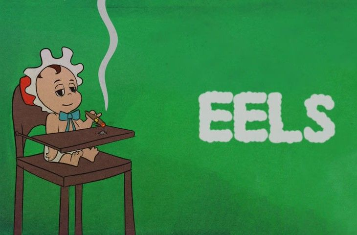 Eels Baby Let's Make It Real